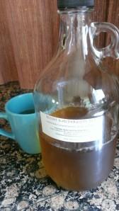 reishi mushroom tea growler